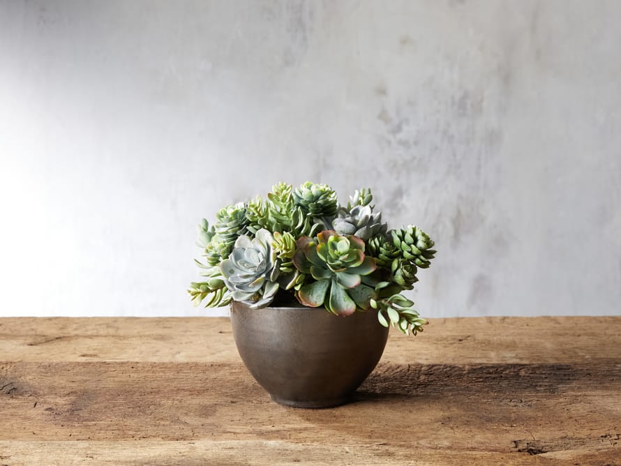 Faux Mix Succulent in Small Bowl