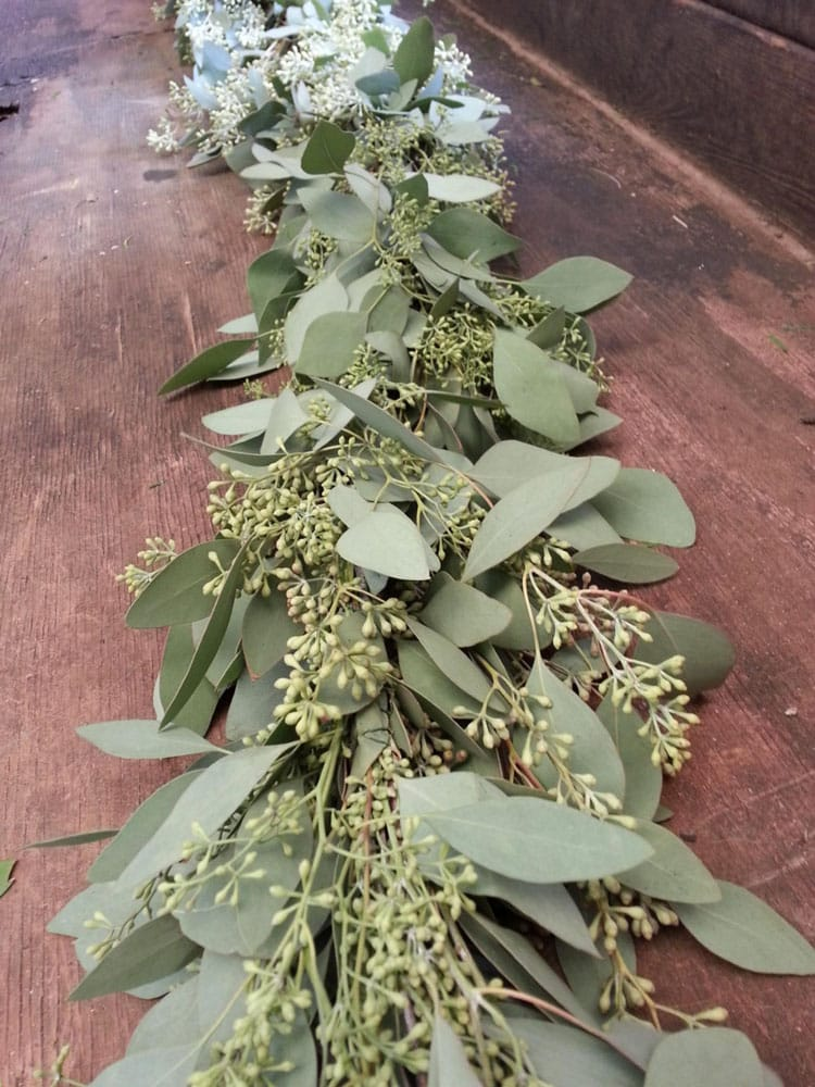 Freshly Harvested Seeded Eucalyptus Garland