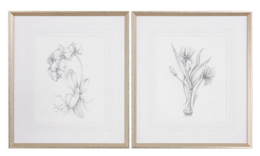 Uttermost 'Botanical Sketches' 2-Piece Framed Print Set, 28x32in